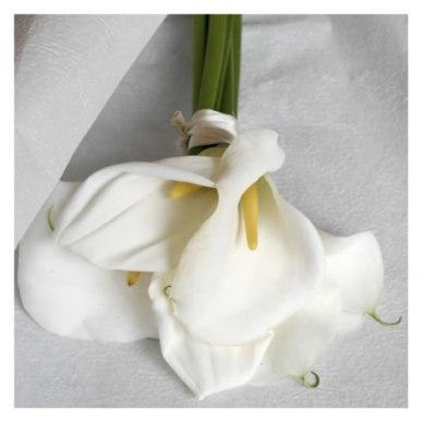 Bouquet Calle - immagine tratta da http://www.maisonstudio.it