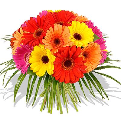 Bouquet di Gerbere - immagine da www.italiainfiore.com