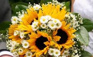 girasole_bouquet_margherite1