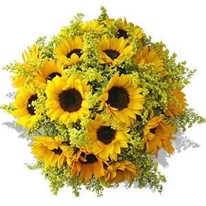 iimmagine tratte da http://fioriefoglie.tgcom24.it/