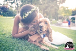 Wedding Dog Sitter
